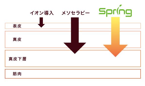 Spring導入図